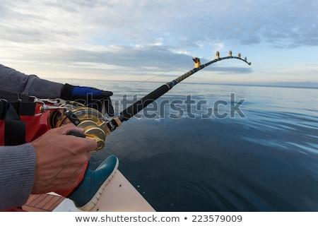 Zdjęcia stock: Połowów · podróży · ryb · wiszący · paznokcie · Widok
