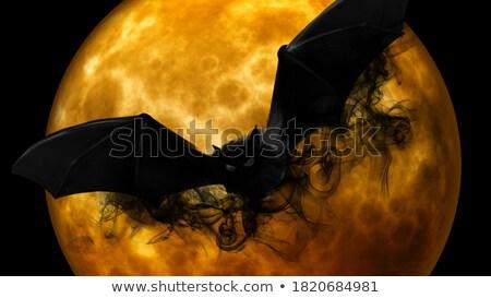 ホット 火災 3dのレンダリング 目 黒 ストックフォト © Wetzkaz