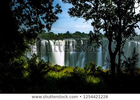 Zimbabwe · oldal · szépség · zöld · utazás · vízesés - stock fotó © simoneeman