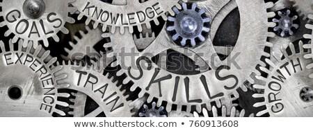 Professional development Stock photo © ivelin