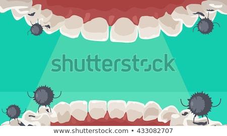 Szörny száj egészséges fog ecset illusztráció Stock fotó © lenm