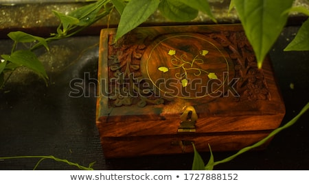 Wooden carving shapes Stock photo © boggy