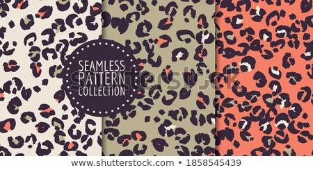 africa set pattern stock photo © netkov1