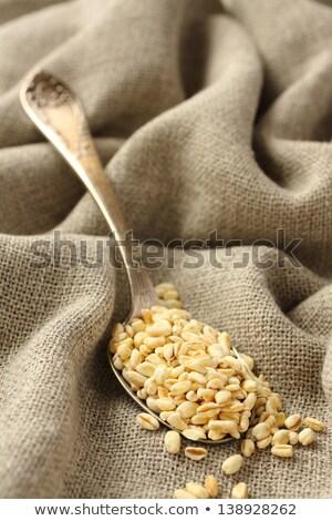 Búzaszemek fém kanál háttér kukorica növény Stock fotó © Melnyk