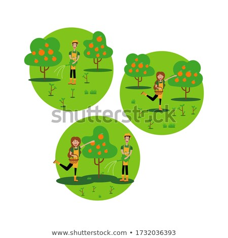 Woman Picking Flowers. Forest with Trees. Vector Stock photo © robuart