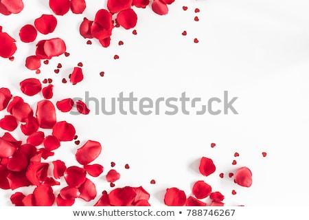 heart shape made of red rose petals Stock photo © dolgachov