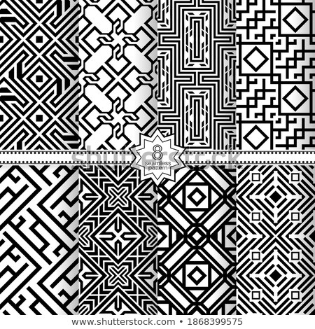 Vector set of various monochrome vintage patterns stock photo © blue-pen