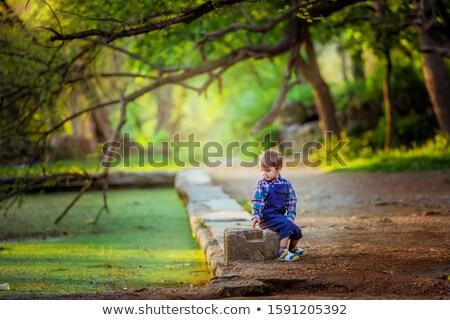 család · fiú · sétál · ősz · park · boldogság - stock fotó © elenabatkova