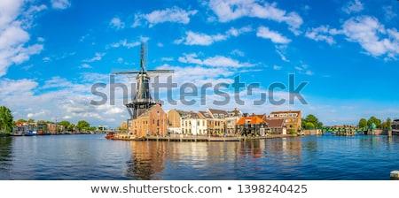 Windmolen Nederland beneden origineel data huis Stockfoto © borisb17
