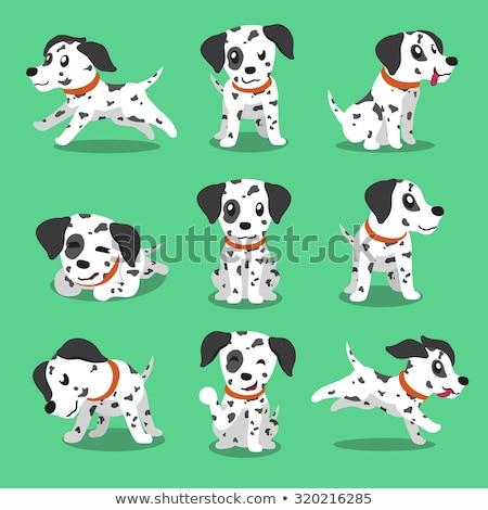 cartoon spotted dog comic animal character Stock photo © izakowski