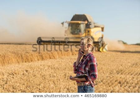 Farmer woman and combine harvester on wheat field Stock photo © Kzenon