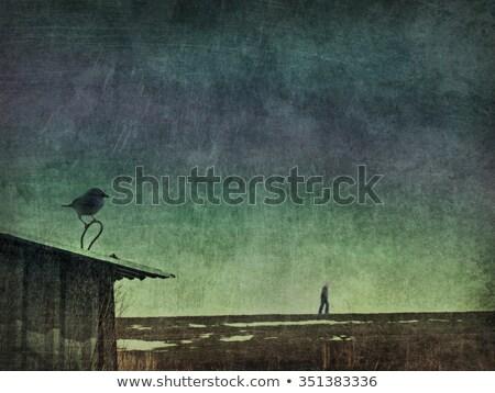 Rajzfilmfigura búskomorság madár izolált fehér vektor Stock fotó © RAStudio
