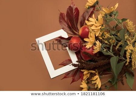 carta · spazio · testo · girasoli · fiore · design - foto d'archivio © rufous