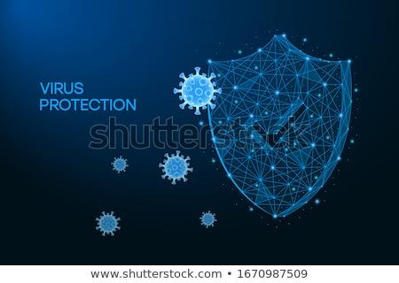 Blauw veiligheid schild virus bescherming sterke Stockfoto © tilo