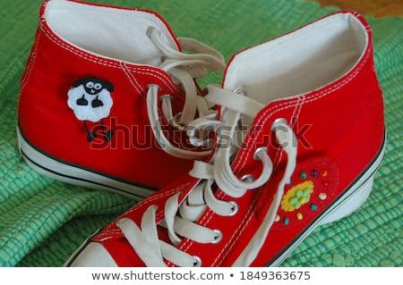 Stock fotó: Koszos · cipők · virág · díszítések · kép · pár