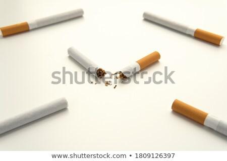 Close up of a cigarette broken against a white background Stock photo © wavebreak_media