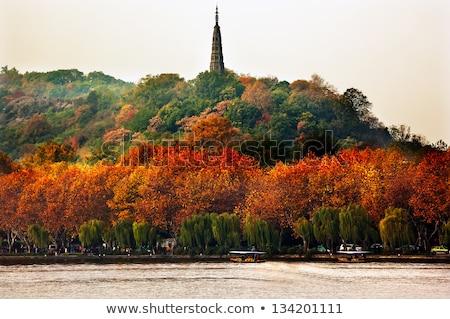ancient baochu pagoda west lake hangzhou zhejiang china stock photo © billperry