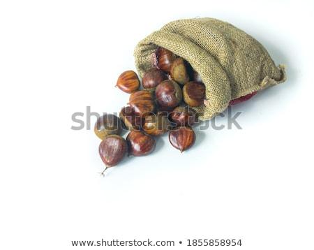 Fresh chestnut Stock photo © hraska