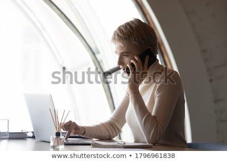 Elarusítónő bemutat márka új laptop ki Stock fotó © stockyimages