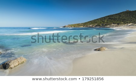 Bodri beach near Ile Rousse in Corsica Stock photo © Joningall