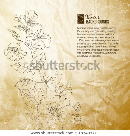 spring branch of a blossoming apple tree textured old paper stock photo © zhukow