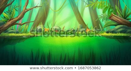 céu · água · natureza · paisagem · mar · preto - foto stock © thp