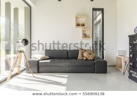 Modern Interior Design With Cozy Black Sofa And Lighting Stock photo © vizarch