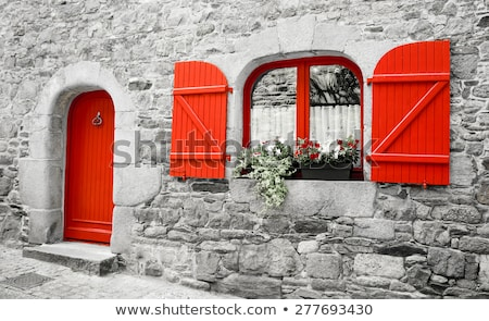 windo in old wall with french geranium flowers Stock photo © compuinfoto