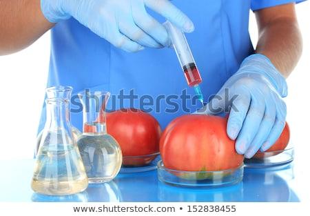 Génmanipulált ételek növekvő víz gyümölcs üveg Stock fotó © LoopAll