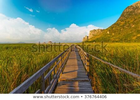 Puente lago roi parque agua Foto stock © FrameAngel