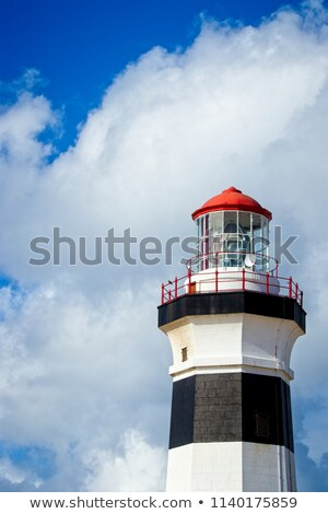 Close up of the Elizabeth Tower Stock photo © AndreyKr