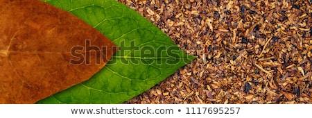 megművelt · dohány · levél · mező · növények · út - stock fotó © hasloo