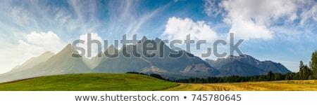 Górskich dzielnica góry Czarnogóra summertime Zdjęcia stock © avq