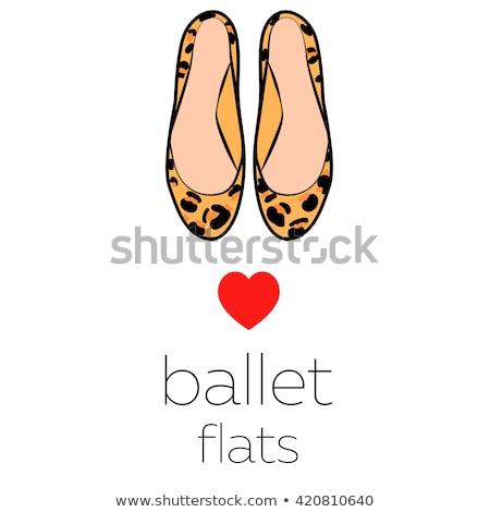 Signore scarpe Leopard bianco bellezza colore Foto d'archivio © ozaiachin