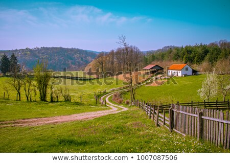old house in western serbia stock photo © dreamframer