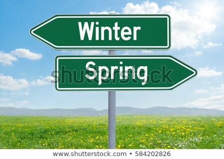 Stockfoto: Twee · groene · richting · borden · winter · voorjaar