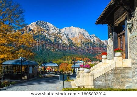 entrada · estrada · castelo · outono · parede · rua - foto stock © stefanoventuri