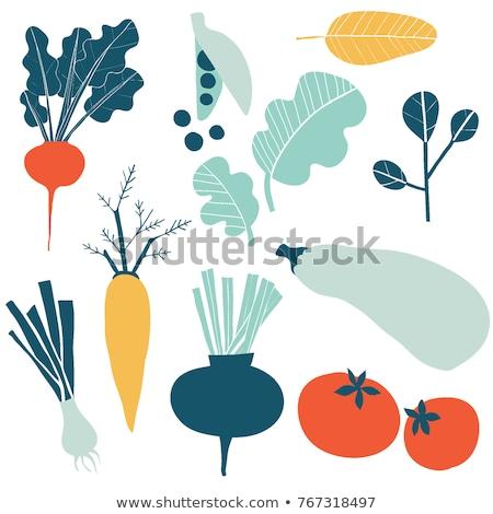 sani · cibo · vegetariano · illustrazione · cibo · biologico · vegetariano - foto d'archivio © robuart