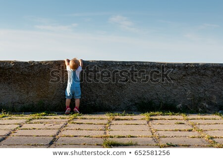 Girl looking over wall Stock photo © IS2