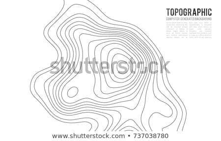 topographic map contour lines background elevation Stock photo © SArts