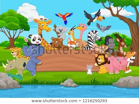 Animaux sauvages zoo illustration arbre nature lion Photo stock © colematt