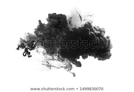 Black ink drops Stock photo © daboost