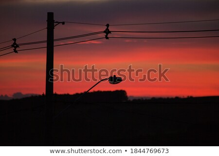 Urban Scene Electricity Pole With Wires And Cables At Sunset Stock photo © diego_cervo