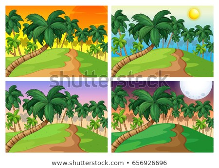 Palm trees on the hills at four different times Stock photo © colematt