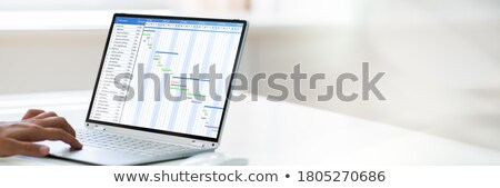 Businessperson Analyzing Gantt Chart On Computer Stock photo © AndreyPopov
