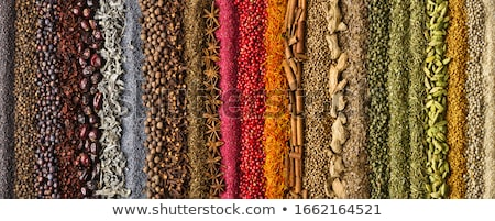 Composition of spices and seasonings  Stock photo © grafvision