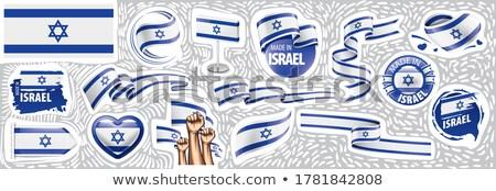 Vektör ayarlamak bayrak İsrail yaratıcı Stok fotoğraf © butenkow