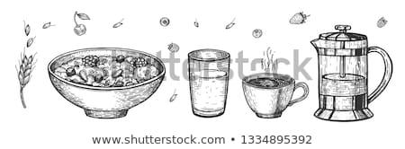 Vegetariano cereal conjunto vetor prato Foto stock © pikepicture