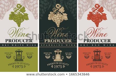 Bağbozumu şarap etiketler ayarlamak dizayn çerçeve Stok fotoğraf © Kaludov