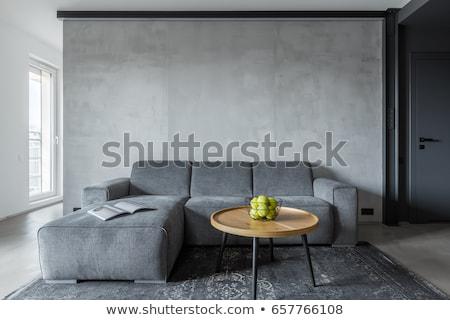 Porta grigio stanza nuovo bella interni Foto d'archivio © IMaster
